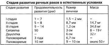 Развитие речных раков. Таблица